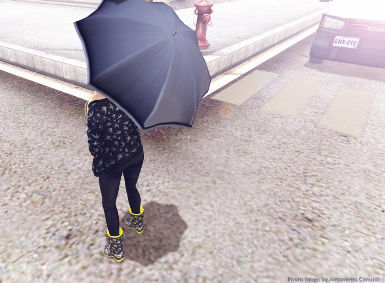 rainy day 2-2